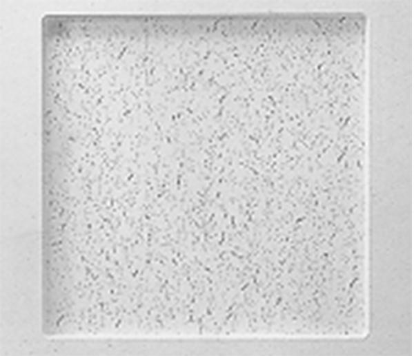 龙牌矿棉板